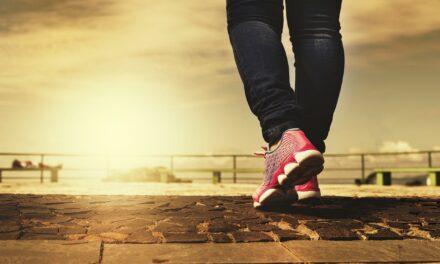 Få råd til at træffe de sunde valg