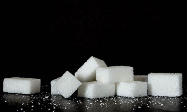 Det søde liv – med eller uden sukker?